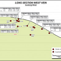 Hammer Zone - Long Section West Vein