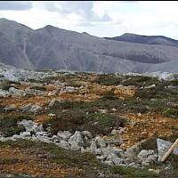 Photo Of Peak Zone Mineralization